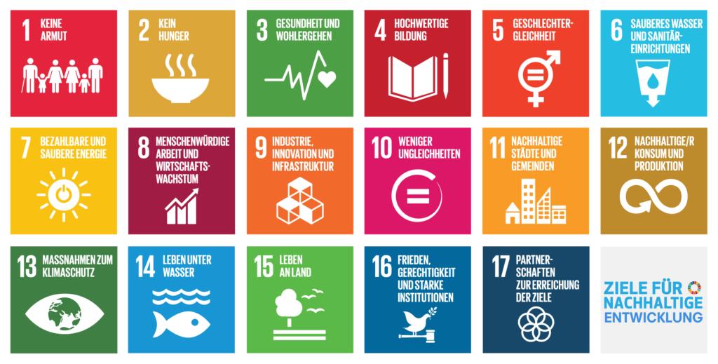 SDG 17 Ziele